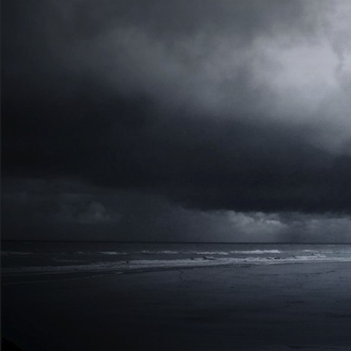 Intertidal Night Call
