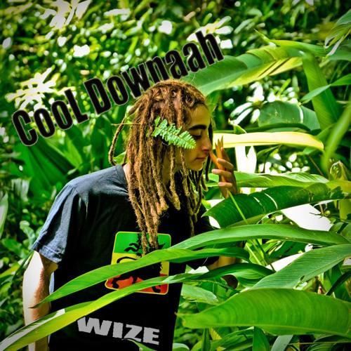 CooL Downaah-WIZE