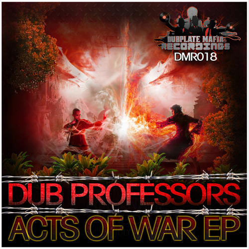 DMR018-A - Dub Professors - The Acts Of War (Preview)