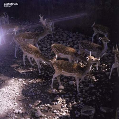 cassegrain - tiamat (album preview)