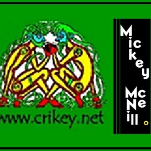 Into The Ground MickeyMcNeill(c)2013