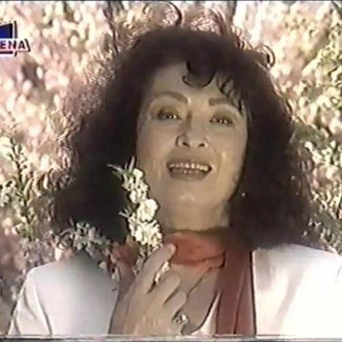Angela Similea - Focuri de primăvară