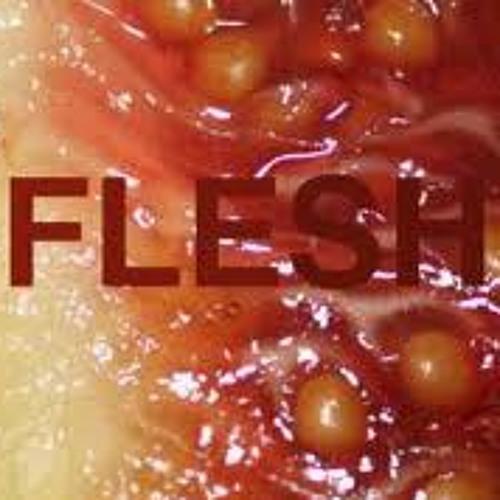 Sean Flesh - HotBoxed
