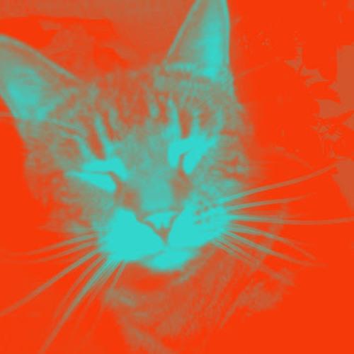 Cat Lover, or Cat Killer?