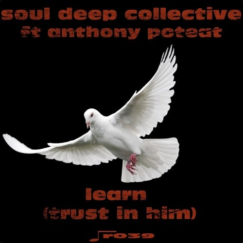 Soul Deep Collective ft Anthony Poteat - Learn (Trust in Him)