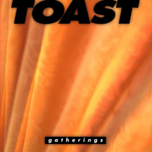 TOAST - The Reign We Trust -