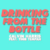 Calvin Harris ft. Tinie Tempa - Drinking From The Bottle (Anthology & Cy-Rus Remake)