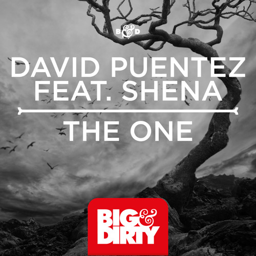 David Puentez feat. Shena - The One (Preview) [Big & Dirty Recordings]