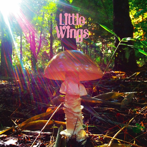 Little Wings - Light Feeling