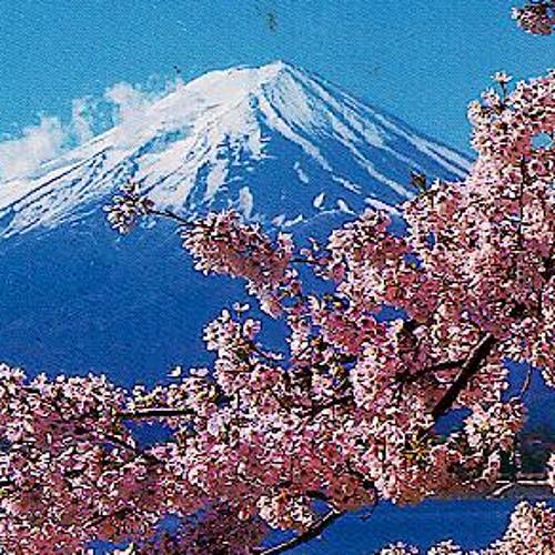 Cherry Blossoms Go!