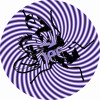 William Medagli & Thallulah - Break Away (Original Mix) OUT NOW!