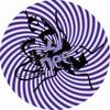 William Medagli & Thallulah - I Want Everything (Original Mix) OUT NOW!