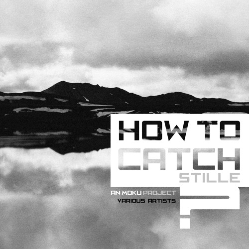 Catch! (How to catch STILLE? - Project album for people with hear loss)
