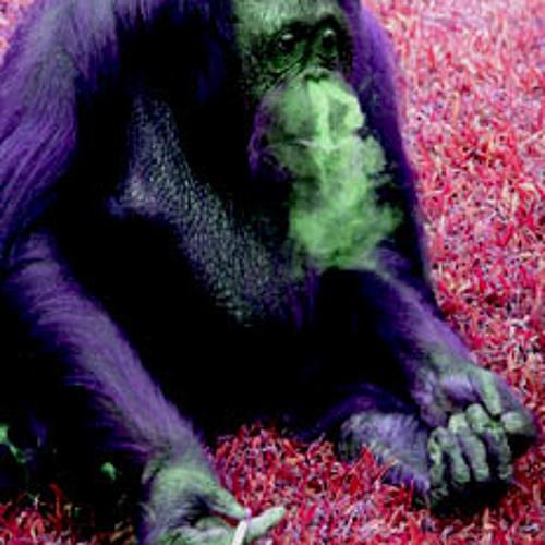 Ape Days