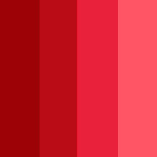 Rouge Début