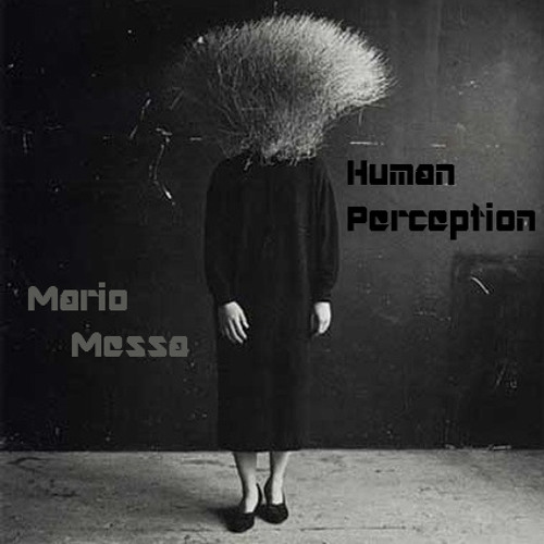Human Perception - Mario Messa