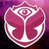 Tribute Tomorrowland 2013 - Episode 001