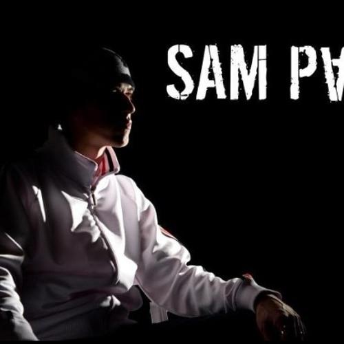 Sam Paul - The Vibe