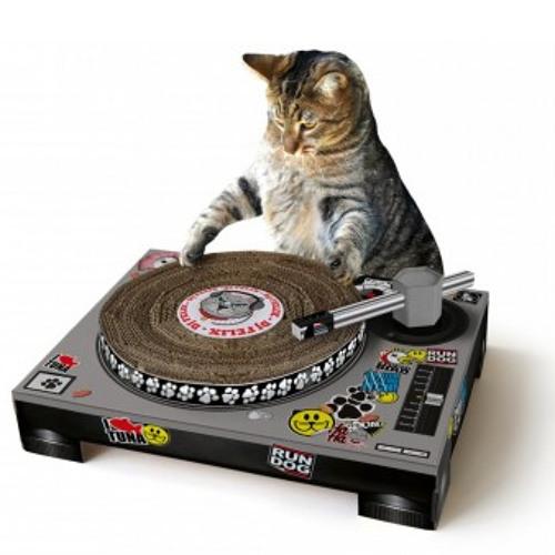 Cat the Disco (Original Mix)
