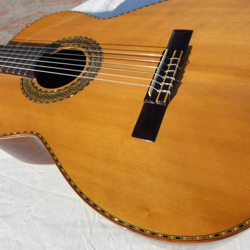 Candelas Tomas Delgado Guitar