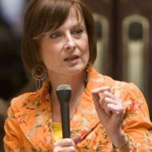 Rep. Terese Berceau on the Proposed Universal Background Check Legislation