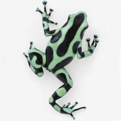 Ganja White Night - Green Poison (Forthcoming on Monkey Dub Recordings)