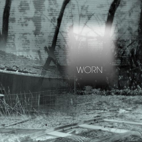common eider king eider - worn (album preview)