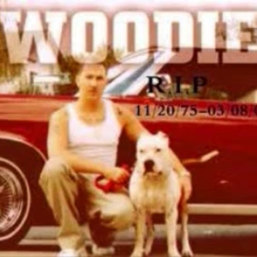 Woodie N The Bay