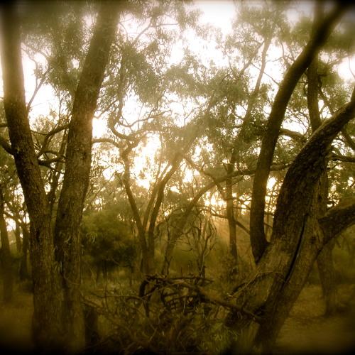 """5 AM - Psychedelic Sunrise""  Morning Psy Mix By Harry Blotter April 2013"