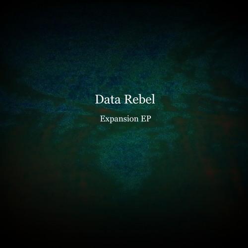 Data Rebel - Subzero