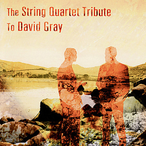 """Dead In The Water"" - String Tribute to David Gray"