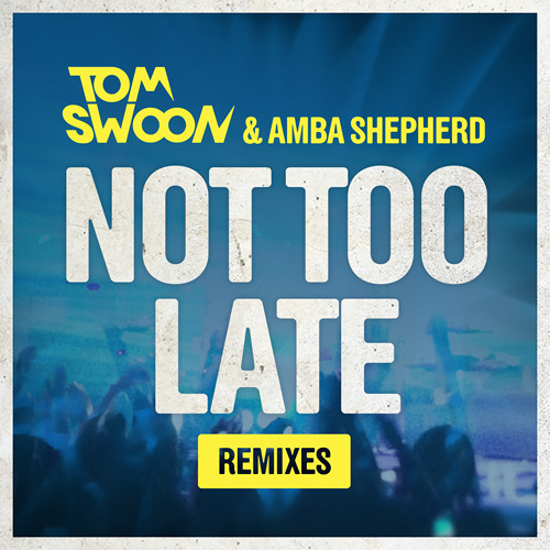 Tom Swoon & Amba Shepherd - Not Too Late (Sebjak Remix) [Preview] - OUT 01/04