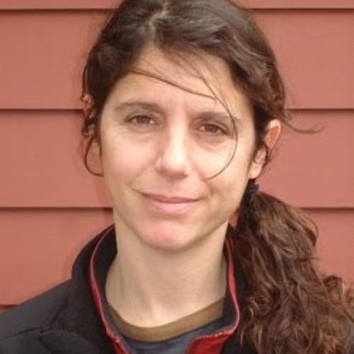 Julie Dermansky on the environmental destruction of fracking