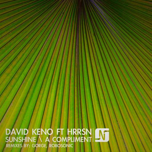 David Keno ft HRRSN - Sunshine/ A Compliment (Robosonic + Gorge Mixes)