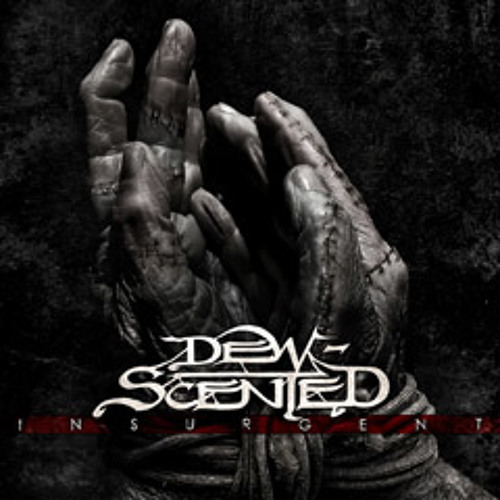 "Dew-Scented ""Confronting Entropy"""