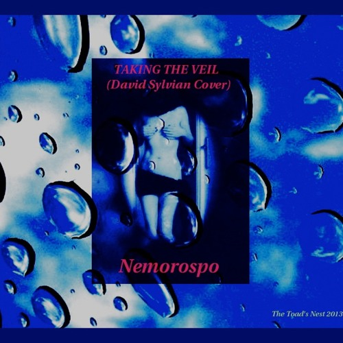 TAKING THE VEIL  (Nemorospo feat Julien# on Drums - David Sylvian Cover)