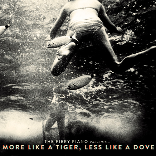 More Like A Tiger, Less Like A Dove