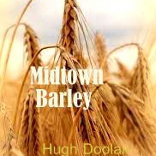 Midtown Barley