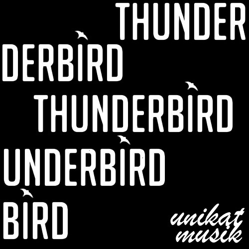 Unikat - Vision Thunderbird (DMO/PRV)