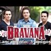 TRES AMIGOS - TRIO BRAVANA REMIX SERTANEJO REGGAETON - DJ FABIO PR
