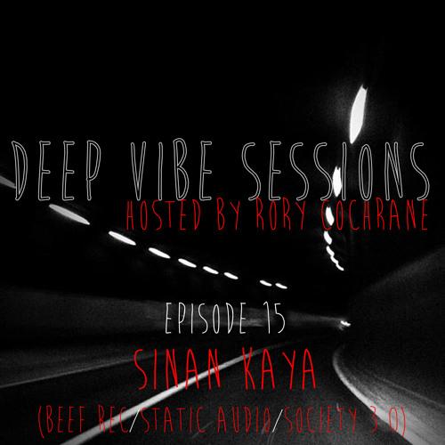DE Radio // Deep Vibe Sessions EP 15 with SINAN KAYA (Beef Rec/Static Audio/Society 3.0)