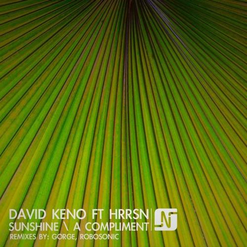 "David Keno ft HRRSN - ""Sunshine (Robosonic Vocal Remix)"" - NOIR Music"