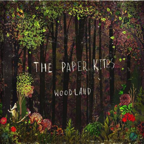 Bloom - The Paper Kites (Daniela Guerra ft Noah Gopen acoustic cover)