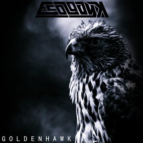 E-Cologyk - Golden Hawk (TOER Remix)