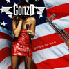 Party In the USA - Miley Cyrus (GonzO Remix) FREE DOWNLOAD