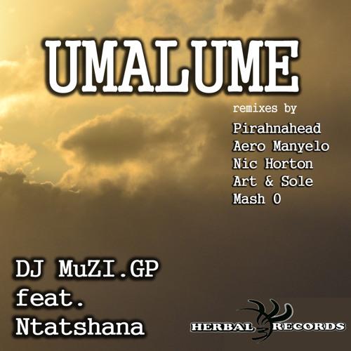 Muzi Gp ft.Mr Ntatshana - Umalume (Pirahnahead Mix) [preview]