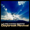 Lauge & Baba Gnohm - Fields of Light