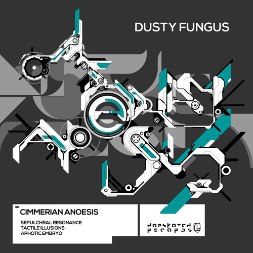Dusty Fungus - Tactile Illusions [hopsk015]