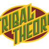 Tribal Theory - Fallin' 4 You