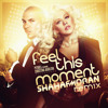 Pitbull Feat. Christina Aguilera - Feel This Moment (Shahaf Moran Remix)